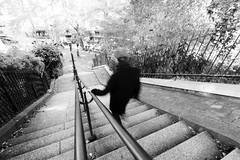 20161015_Montmartre_008 (la.truf) Tags: paris montmartre canon7dii 1020sigma