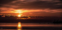Early Bay Look---in explore (beachpeepsrus) Tags: sun shore sunrise water westcoast whiteisland sky shorefront