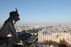 IMG_9684 (Irirarara) Tags: paris francia france grgolas artegtico gtico artemedieval medievo notredame airelibre arquitectura cielo torreeiffel