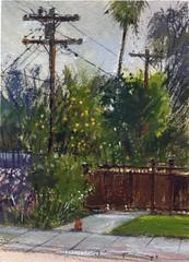 Fletcher Avenue (Sherry Schmidt) Tags: art painting pleinair watercolor watercolour gouache green trees street powerlines powerpoles utilitypoles southpasadena california city urban neighborhood cat palms