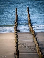 Wooden posts (einervonneruhr) Tags: olympus omd em5 mzuiko 75300mm strand beach zeeland niederlande netherlands holzpfosten wooden posts