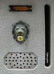 ringgg... ringgg...., hello ? (HansHolt) Tags: hello door venice selfportrait mailbox bell lion ring ornament speaker microphone letterbox pronto brass doorbell nameplate veneti venenezia olympusmju9010 olympusstylus9010