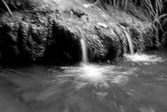 Tiny falls (Photoliver) Tags: chutedeau parcfloral tinyfall photoliver leicax1
