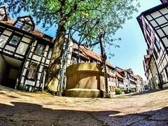 Live in a story.  #GoPro #GoProMx #PhotoOfTheDAy #InstaGood #Me #Mxico #PicOfTheDay #InspiredByYou #BeAHero #GoProHero #GoPole #LoveToGoPro #GoProMoff #ab #FotoDelDa #MochileroMx #go_pro_life #Europe #Germany #Deutschland #Hameln (abrahammojica1) Tags: fotodelda mxico mochileromx europe deutschland goprolife lovetogopro me goprohero gopromoff gopole germany inspiredbyyou beahero gopromx gopro hameln ab picoftheday instagood photooftheday