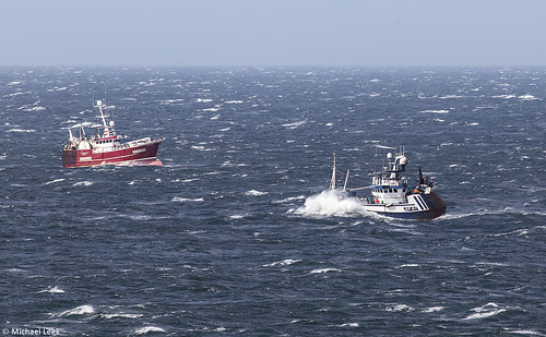 Trawlers Conquest BCK 364 and Loranthus BF 61 fishing for squid; Moray Firth, Scotland