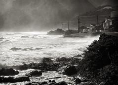 Rough (unlearn_art) Tags: bw hongoekabay sea coast newzealand porirua