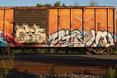 CBS DISKO (TheGraffitiHunters) Tags: graffiti graff spray paint street art colorful freight train tracks benching benched boxcar cbs disko
