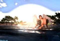 Angel In The Water (CeraphKeilah) Tags: sea island hyper boobs breasts secondlife sl wet palms wings angel tattoo outdoor photoshop tanjakeilah