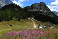 Courmayeur Town in Italy - Tour Mont Blanc (Umdah Photos) Tags: mountains valleys forest