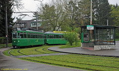 Wet Lerchenstrasse Standard (Don Gatehouse) Tags: switzerland basel baselerverkehrsbetriebe bvb tram465 trailer1496 classbe44 swissstandard bruderholz messeplatz lerchenstrasse line15