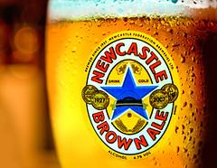 cheers :)) (gian_tg) Tags: beer ale drink label cold stars macromondays bluestar macro bokeh newcastlebrownale drinkcold cheers