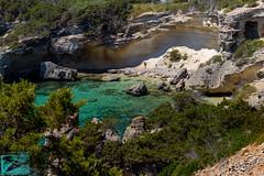 Pianosa 16704 (Roberto Miliani / Ginepro) Tags: isola hiking trekking walking elbe pianosa island ile camminare parconazionale arcipelagotoscano toscana tuscany toskana spring primavera