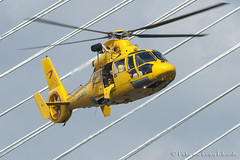 Eurocopter AS-365N-3 Dauphin 2 (PvRFotografie) Tags: rotterdam rotterdamzuid nederland holland helicopter yellow geel sonya900 minolta minoltaaf70210mmf40 vintagelens demonstration flying