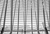 Little girl (hernanpba) Tags: photo photography image photographer hernanpiñera oto fotografia imagen pic fotografo niña nena lineas blancoynegro ventanal cristal cristaleras sala altura arquitecura arquitecto calatrava ciudaddelasartesylasciencias valencia españa europa girl blackandwhite window glass crystal room hall height architecture architect cityofrtesandsciences spain europe