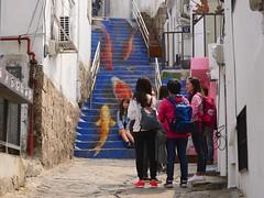 Ihwa Mural Village (Travis Estell) Tags: art ihwa ihwamuralvillage ihwadong jongno jongnogu korea mural muralonstairs publicart republicofkorea seoul southkorea stairmural