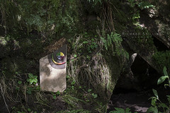 'Cusp' (escher is still alive) Tags: landart naturalart ephemeralart leaves colour autumn richardshilling sculpture season