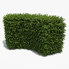 Free Boxwood Hedge (oleg_scolt) Tags: free plant hedge box shrub garden topiary park bush nature foliage fence boxwood leaf buxus corner visualization exterior 3d green set collection