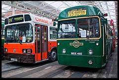 Chase---Green-Line (zweiblumen) Tags: mxx485 ojd868r aec bus publictransport londontransport greenline chase wolverhampton gravesend northwestmuseumofroadtransport sthelens merseyside england uk hdr canoneos50d polariser zweiblumen 24 725 regaliv