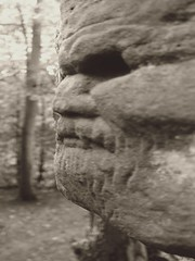 The Watcher in the Rocks (stuant63) Tags: cliff carving face rock greenman den scotland fife dunino