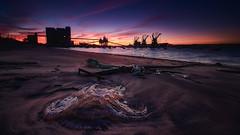 You should have stayed home (Joo Cruz Santos) Tags: seascape landscape sunset trafaria portugal nex5r sony jellyfish ndgradreverse