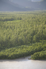 060727-512 (USFS Region 10) Tags: chugachnationalforest alaska forestservice aerial princewilliamsound pws copperriverdelta cordova copperriver moose alcesalces
