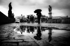 The Tracker (tomabenz) Tags: blackandwhite rainyday sonya7rm2 streetphotography czechrepublic europe praga prague praha monochrome noiretblanc streetview umbrella urban karlv most