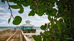 Juno Beach Pier HDR (srotag1973) Tags: juno beach pier florida hdr seascape ocean seagrapes