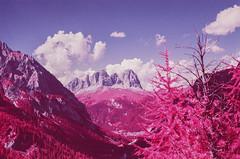 Val Contrin (fra_padovani) Tags: olympusom2n aerochrome fpp infrared