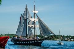 DSC_3243 (mkutz2011) Tags: tallships water waterfront pirates brockville nikon