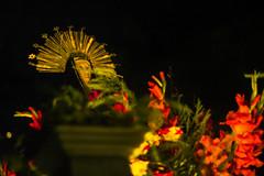 Imagen de la Virgen de los Dolores acompaando al Santo Entierro (hacer fotografa es toda mi vida) Tags: procesiones semanasanta guatemala cultura tradicin tradicionesenguatemala travel destiny inguat