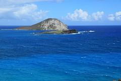 09302016_005 (ALOHA de HAWAII) Tags: mananaisland rabbitisland viewfrommakapuupoint eastoahu hawaii