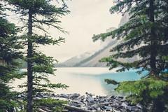 Beautiful Moraine Lake, Alberta (JosefineKphotography) Tags: alberta lakemoraine morainelake glacier glacierlake glaciallake water lake spruce canada canoneos5dmarkiii tamron bokeh beyondbokeh forestbokeh waterdrops kanada northamerica banffnationalpark canadianrockies rockymountains