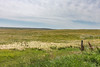 _MG_2200.jpg (nbowmanaz) Tags: saskachewan mossbank saskatchewan canada unitedstates southweststates places stvictor