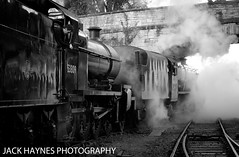 Off shed 7F and 8F (Jack Haynes Photography) Tags: swanage railway autumn steam gala 2016 dorset purbeck locomotive heritage 48624 53809