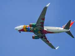 southwest airllines florida 1 livery (pbo31) Tags: sanfrancisco california bayarea nikon d810 color september fall 2016 boury pbo31 sanfranciscointernational sfo blue plane airline sanmateocounty aviation coyotepoint sanmateo travel arriving approach flight airport landing boeing 737 florida 1 southwestairlines livery