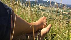 20140622_12_05_29_00039.jpg (pantyhosestrumpfhose) Tags: pantyhose pantyhosefeet strumpfhose bestrumpftebeine nylon nylonlegs tights sheers shoe legs feet schuhe toe pantyhoselegs