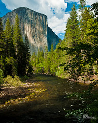El Capitan Behind the Merced River in Spring (NimonPro.com) Tags: yosemite yosemitenationalpark nationalpark nature trees sky clouds water mountains california elcapitan river mercedriver hiking green greenery