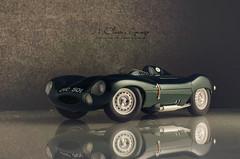 1954 Jaguar D Type Short Nose Prototype in British Racing Green (aJ Leong) Tags: jaguar d type short nose british racing green 118 autoart classic car vintage vehicle