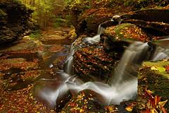 Atticus Falls: Glitter dust (Shahid Durrani) Tags: atticus falls sullivan run county waterfall pennsylvania leaves