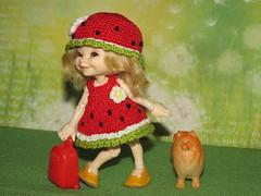 IMG_4751 (cat-soft paws) Tags: realpuki spitz dog case suitcase joy laughter smile soso sundress panama green yellow red watermelon mood