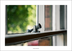 Sash window catch (Descended from Ding the Devil) Tags: dof sonya7mkii sonyalphadslr staffordshire timtoft beyondbokeh bokeh catch cellos depthoffield fullframe green instruments mirrorless photoborder sash selectivefocus strings tree violins window