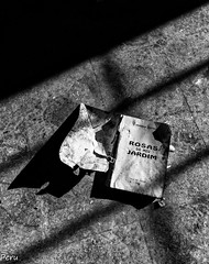 Rosas do meu jardim (Perurena) Tags: libro book suelo floor sombras shadows luces lights destrozo abandono ruina decay blancoynegro blackandwhite monocromo urbex urbanexplore