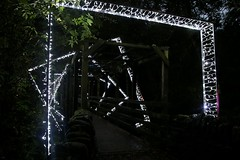 2016 - 14.10.16 Enchanted Forest - Pitlochry (44) (marie137) Tags: enchanted forest pitlochry mobrie137 scotland lights music people water reflection trees shows food fire drink pit patter shapes art abstract night sky tour family walk path bells smoke disco balls unusual whisperer bridge wood colour fun sculpture day amazing spectacular must see landscape faskally shimmer town