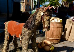 Autumn horse! (ineedathis,The older I get the more fun I have....) Tags: autumn horse hay corn barrel pumpkins gourds handycraft oktoberfest fair oysterbay longisland newyork nikond750 decorations