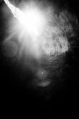 Orbs (lorenzoviolone) Tags: agfascala200 bw blackwhite blackandwhite d5200 dslr dark monochrome nikon nikond5200 reflex rocks vsco vscofilm beam cave caves darkness exploration explorer exploring flares lightbeam orbs streetphoto streetphotobw streetphotography sun sunflares sunlight travel:malta=aug2016 addingli malta