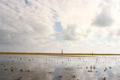 no sea (flyerkat_L.E.) Tags: nordsee wattenmeer watt leuchtturm film analog nikon fm2 35mm kodakultramax400