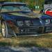 1979 Pontiac Firebird Trans Am 403ci (2016 WNC Super Show, Dillsboro, NC)