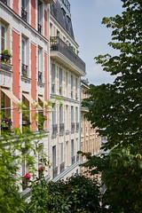 (Leo Hernn) Tags: paris france light gold golden hour street photography travel