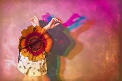 "Día 131. Tema ""Sombras"". Proyecto 365. Silvia Jareño Torés. (Silvia Jareño Torés) Tags: instagramapp square squareformat iphoneography uploaded:by=instagram photo photoshoot photoart photographer photography flower art arte artistic artista creative photocreative composition color colour canon canon5d conceptual fotógrafa autorretrato selfportrait estudio sombras shadows surrealism surrealist duelos"