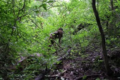 IMG_6283 (Ehrliche Aktfotografie) Tags: outdoor nude warrior mud dirt